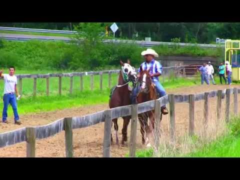 CARRERAS A CABALLO JC VOL 4
