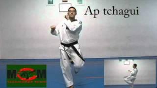 taekwondo - chutes faixa branca.avi