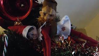 getlinkyoutube.com-Elf on the Shelf: Grandpa Elf Kidnaps Angelcakes!!!