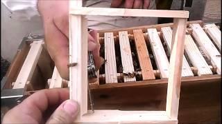 getlinkyoutube.com-Eco Bee Box - Utah Hive Langstroth Top-Bar