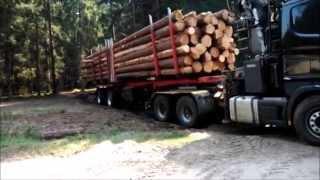 getlinkyoutube.com-Scania 164G V8 480 - małe problemy z wyjazdem z drewnem.... :)