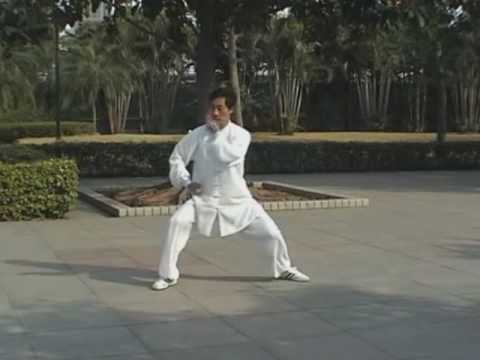 Chen Style Tai Chi form - 83 movement Yi Lu