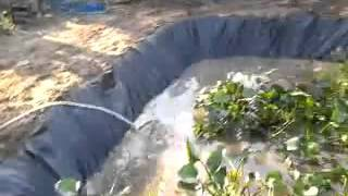 getlinkyoutube.com-การสาธิตการทำบ่อพลาสติกสำหรับเลี้ยงปลาหมอ