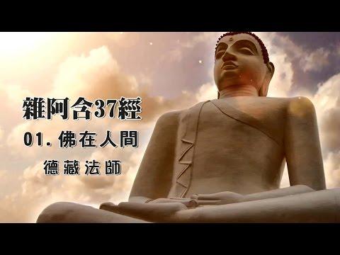 03.阿含『經法』【進階教理】