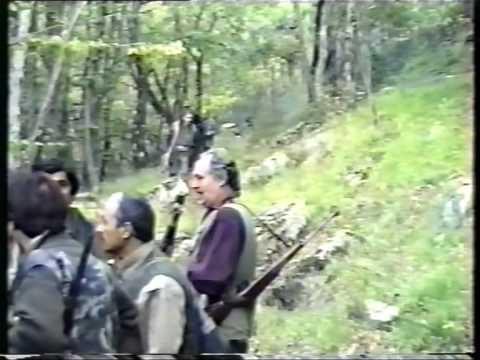 caccia cinghiale,i solenghi 1