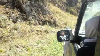 """getlinkyoutube.com-Nissan Safari/Patrol Y60 Lift4"""" Togh Dog  BF Goodrich_КМ2_33/12,5R15"""