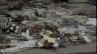 getlinkyoutube.com-Freddie Mercury - Funeral Blues