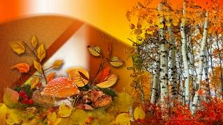 getlinkyoutube.com-Красивое видео про Осень
