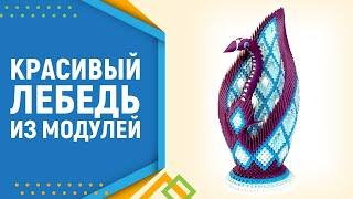 getlinkyoutube.com-Модульное оригами лебедь. Modular origami Swan. Лебедь оригами. часть 1