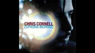 Chris Cornell – Steel Rain