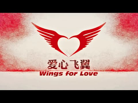 Wings for Love 2015 - China International Wingsuit Charity Event