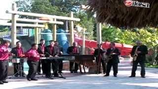 getlinkyoutube.com-Marimba Orquesta Usula Internacional - Recuerdos Bailables