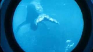 getlinkyoutube.com-Submarine Voyage MERMAIDS in COLOR