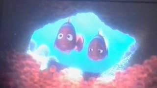 getlinkyoutube.com-Alla ricerca di Nemo: il barracuda