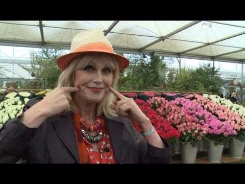 Joanna Lumley: Chelsea Flower Show 'like a drug'