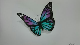 How to Draw a Realistic Butterfly with Colored Pencils