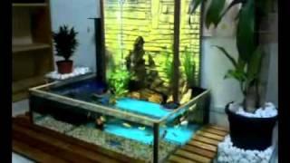 getlinkyoutube.com-Aquarium_Grafitasi_Terbalik.mp4