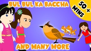 Bulbul Ka Bacha and Many More |  50 Minutes + Compilation | Urdu Rhymes Collection