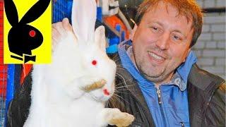 getlinkyoutube.com-Как разводить кроликов технология бизнеса