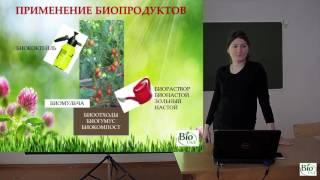 Натуральные удобрения и защита для сада и огорода