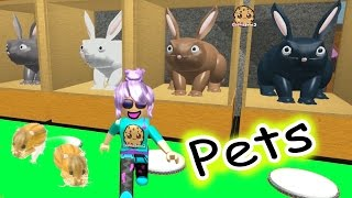getlinkyoutube.com-Hamsters In The House - Roblox Animal House Pets - Online Game Let's Play Random Fun Video