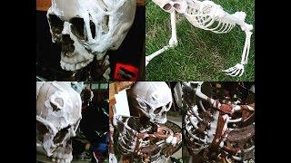 getlinkyoutube.com-Skeleton ground breaker and skeletons