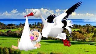 getlinkyoutube.com-Аист с ребенком. Футаж аист. Аист несет ребенка. Аист с малышом