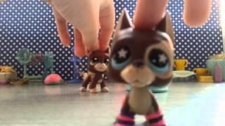 getlinkyoutube.com-Vlog lps: Hobby ( tak jakby) #4 dodane przez Tori