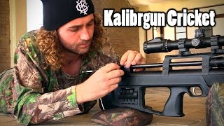 getlinkyoutube.com-Kalibrgun Cricket .177 | Thoughts & Opinions (Part 1)
