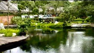 getlinkyoutube.com-V13 14/12/08 Visiting Sentul Park Koi Centre