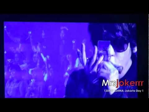 [Fancam] 120427 SS4INA Day 1 Kyuhyun - Isn't she lovely (short harmonica)