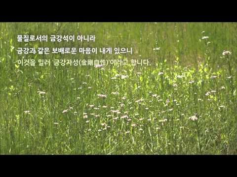 마음편지 24 - 내 안의 금강경