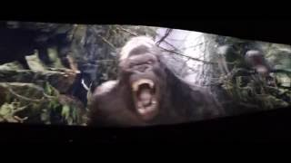 getlinkyoutube.com-King Kong 360 3D: Return To Skull Island Experience Universal Studios