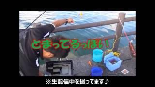沖縄 宜野湾で釣りしちゃったら、こんなん釣れちゃいました!