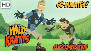 getlinkyoutube.com-Wild Kratts - Clip Compilation (50 minutes)