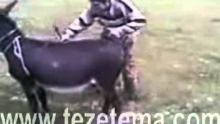 getlinkyoutube.com-Iki essek Mirt Prikol 2014