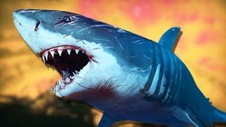 getlinkyoutube.com-TUBARÕES ASSASSINOS! - Shark Attack