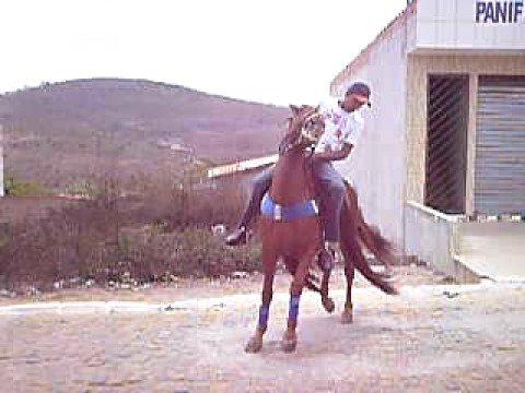 Rogerio com o Cavalo de vaquejada