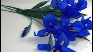 getlinkyoutube.com-Kwiaty z bibuły- Irys. Crepe paper flowers - Iris. Ирис DIY