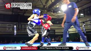 Christ Figueroa vs Romeo Andrade Chicago Harrison Park Boxing Event