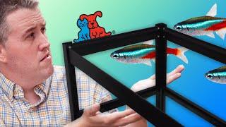 getlinkyoutube.com-Lowes 40 Gallon Breeder Double Stand. Petco $1 Gallon Sale - Aquarium Rack Fish Room.
