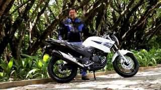 Teste Yamaha Fazer 250 Blue Flex - Vrum