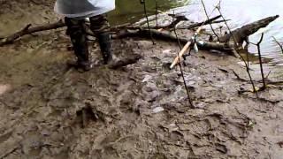 getlinkyoutube.com-Pancing - ikan sembilang gelang patah