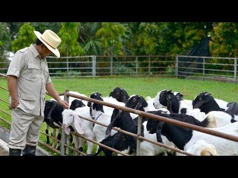 Prabowo Subianto: Membangun Kembali Indonesia