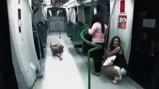 getlinkyoutube.com-Broma Pesada - Zombies en el metro