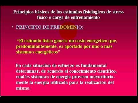 FISIOLOGIA DEL EJERCICIO   2009  - 4