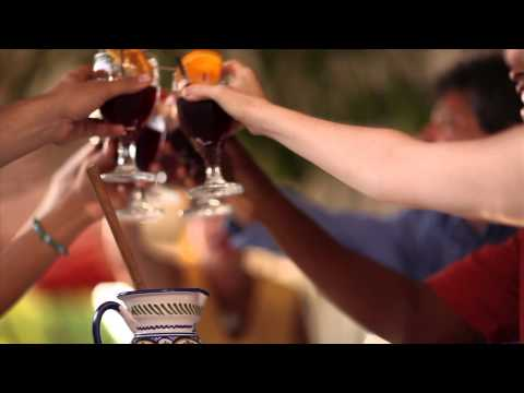 Sarasota County Destination Video - US (3 Minute) - 2013