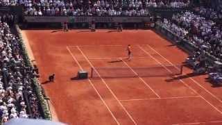 getlinkyoutube.com-Roland Garros 2015 - Djokovic vs Wawrinka - Final game and match point !
