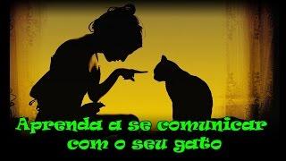 getlinkyoutube.com-Aprenda a se comunicar com o seu gato. #20