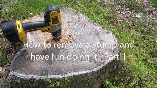 Easy Way to Remove Tree Stumps - Part 1